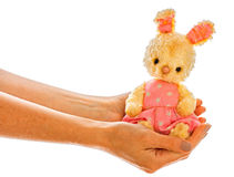 Rabbit bunny toy isolated in hand Stock Photos