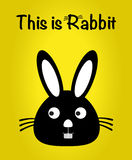 This is rabbit, bunny vector, cute rabbit colorful. yellow background Royalty Free Stock Images