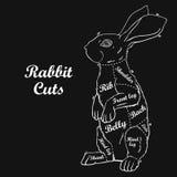 Rabbit butcher cuts diagram Stock Images