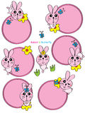 Rabbit card set Royalty Free Stock Photography