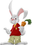 The rabbit with carrot. A smart rabbit with carrot in his hand Royalty Free Stock Images