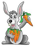 Rabbit with carrot. Color illustration of rabbit holding carrot Stock Photography