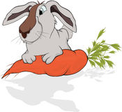 Rabbit and  carrot. Cartoon Royalty Free Stock Photo