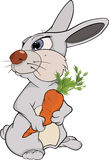 Rabbit and a carrot. Cartoon Stock Photo