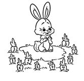 Rabbit carrot math kids coloring pages Royalty Free Stock Photography