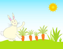 Rabbit and carrots Royalty Free Stock Image