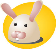Rabbit cartoon Royalty Free Stock Photography