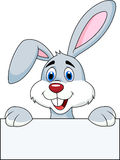 Rabbit cartoon with blank sign Royalty Free Stock Images