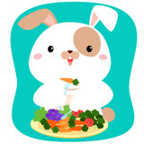 Rabbit cartoon eating vegetable . Stock Photography