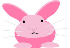 Rabbit cartoon Stock Images