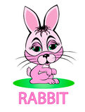Rabbit cartoon Royalty Free Stock Photos