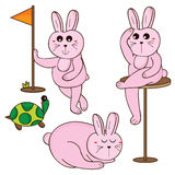 Rabbit cartoon set Royalty Free Stock Photos