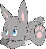Rabbit cartoon , vector Stock Image