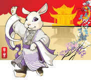 Rabbit: Chinese new year greeting card. White rabbit, the symbol of coming 2011 year according Chinese lunar calendar, wearing traditional Beijing opera costume Stock Photo