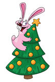 Rabbit and christmas tree Stock Photos