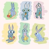 Rabbit Collection Royalty Free Stock Image