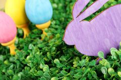 Rabbit with colorful easter eggs Royalty Free Stock Photos