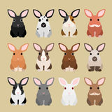 Rabbit coloring variations Stock Photo