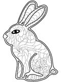 Rabbit Coloring vector for adults Royalty Free Stock Photography
