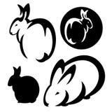 Rabbit design set Royalty Free Stock Photos