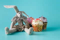 Rabbit doll with cupcake Royalty Free Stock Image