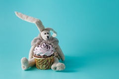 Rabbit doll with cupcake Royalty Free Stock Photo