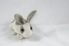 Rabbit Doll Royalty Free Stock Images
