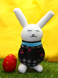 Rabbit doll and easter egg Royalty Free Stock Photos