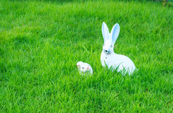 Rabbit doll in the garden. The rabbit doll in the garden, It isn't only white colorbut has pallid blue Royalty Free Stock Photo