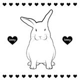 Rabbit Drawing Stock Image