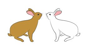 Rabbit. Drawing of a white and red domestic rabbit Stock Photography
