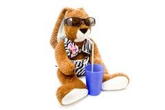 Rabbit with drinking mug Stock Images