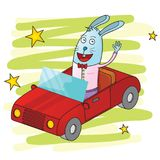 Rabbit driving a car Royalty Free Stock Images