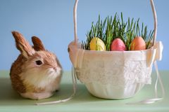 Rabbit and Easter eggs in the basket Stock Photo