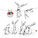 Rabbit easter Royalty Free Stock Photos
