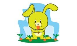 Rabbit eat carrot Stock Images