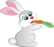 Rabbit eating a carrot. Cute rabbit eating carrot cartoon Stock Image