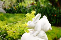 A monument rabbit eating flowers royalty free stock photography