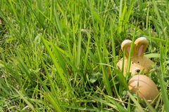 Rabbit and Egg - Easter Stock Images