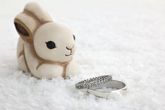 Rabbit and engagement rings Stock Image