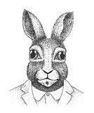 Rabbit Engraving Illustration Royalty Free Stock Images