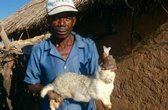 A rabbit farmer in Angola. Royalty Free Stock Images