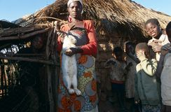 A rabbit farmer in Angola. Royalty Free Stock Photos