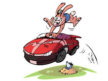 Rabbit in fast car Royalty Free Stock Photography