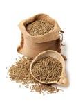 Rabbit feed Royalty Free Stock Image