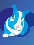 Rabbit fell fright animal bunny eye fear. Funny curious chicken-hearted rabbit vector illustration