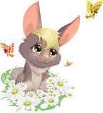 Rabbit on the field. Nice rabbit on a field of daisies among butterflies Royalty Free Stock Photos