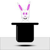 Rabbit in Floating Hat Stock Image