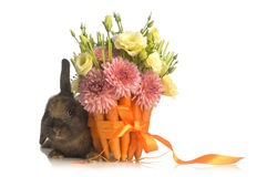 Rabbit  with flower decoration Royalty Free Stock Image