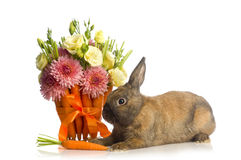 Rabbit  with flower decoration Stock Photos